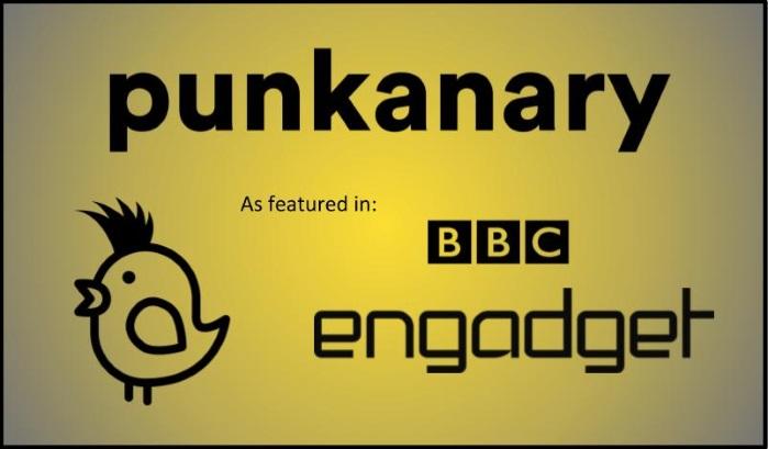 Punkanary Image2