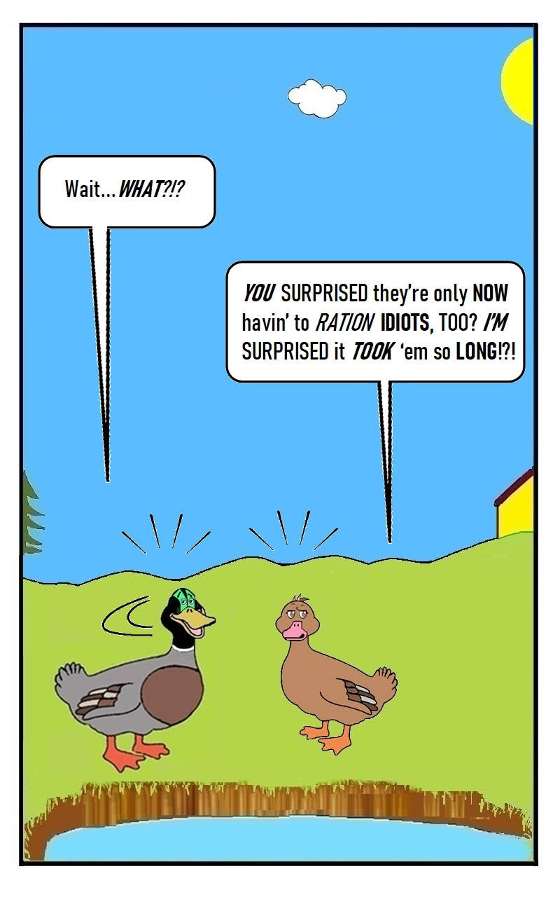 EP.14_QUACK_PAGE 14 - by D. Payne, SEP 2021