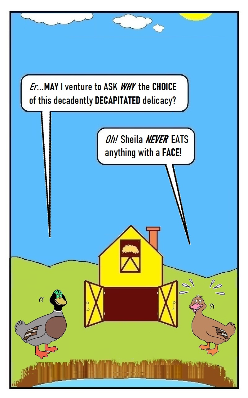 EP.14_QUACK_PAGE 8 - by D. Payne, SEP 2021