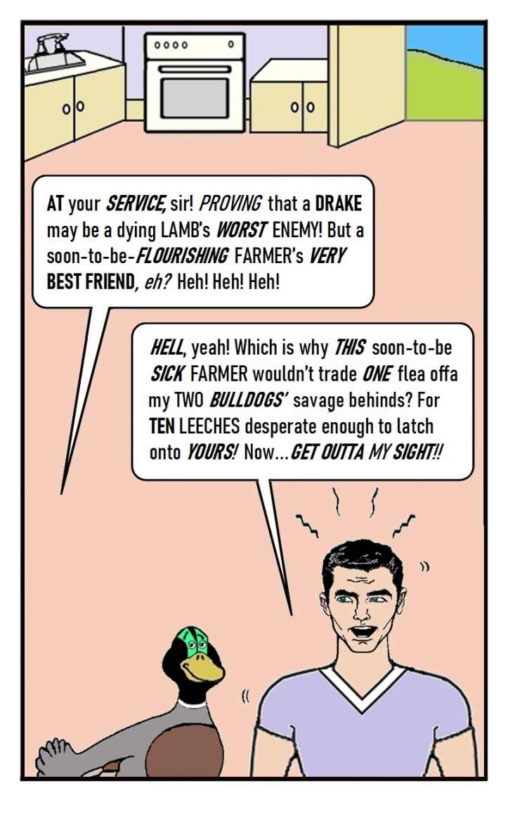 EP.15_QUACK_PAGE 17 - by D. Payne, SEP 2021
